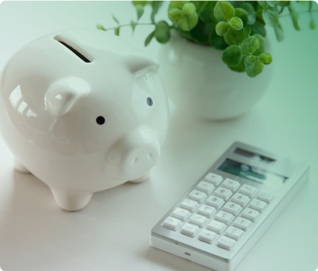 piggy bank with calculator and plant